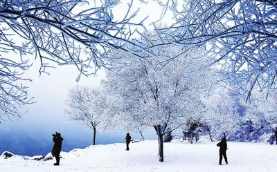 吉林国际雾凇冰雪节开幕图片