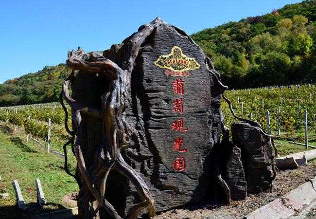 吉林省蛟河市:培育华兰德冰酒特色小镇
