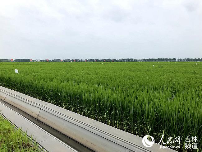 吉林市:财产兴隆助力村落振兴