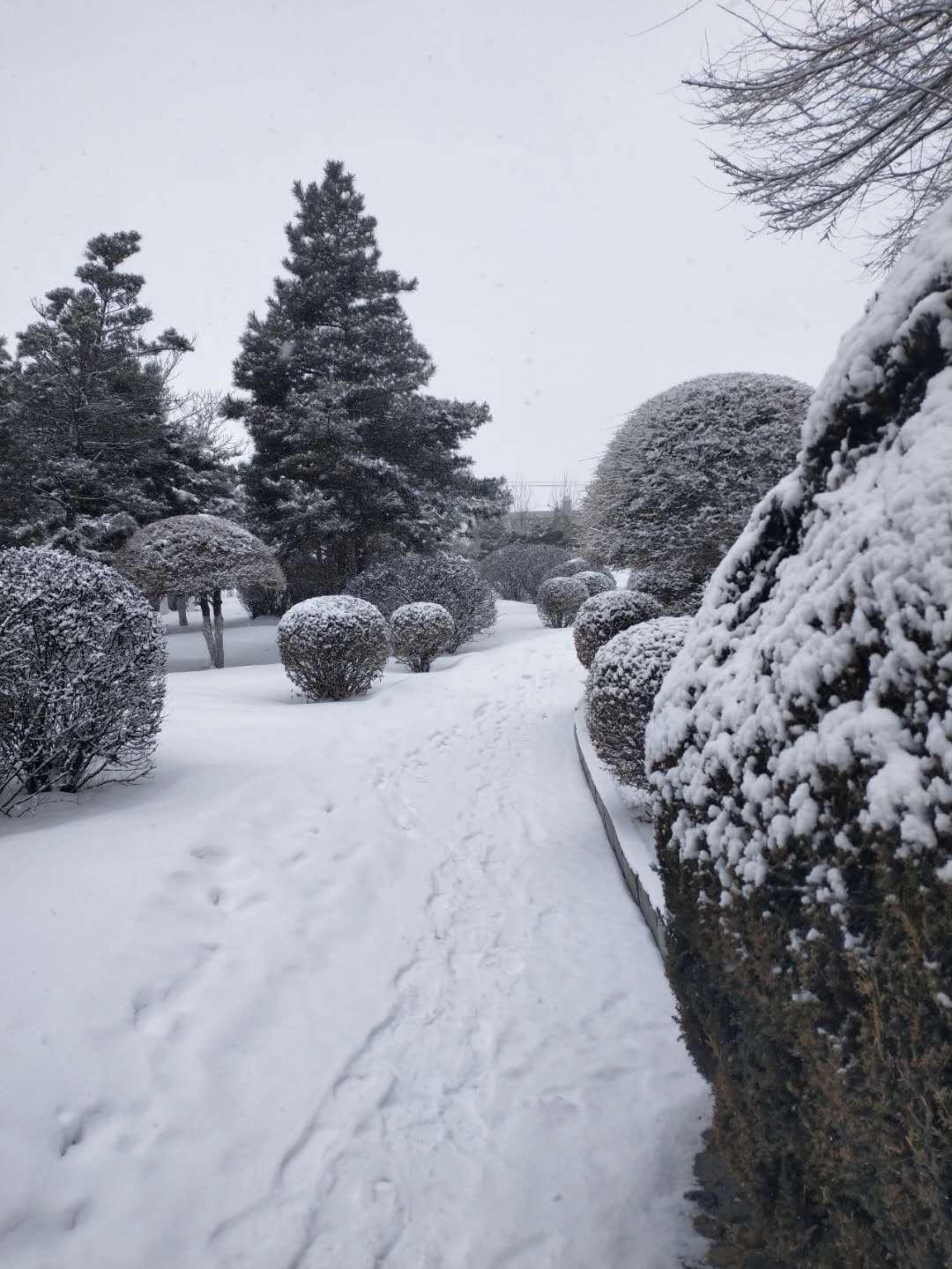 【吉林天气资讯】本周雨雪多升温快,请注意预防感冒