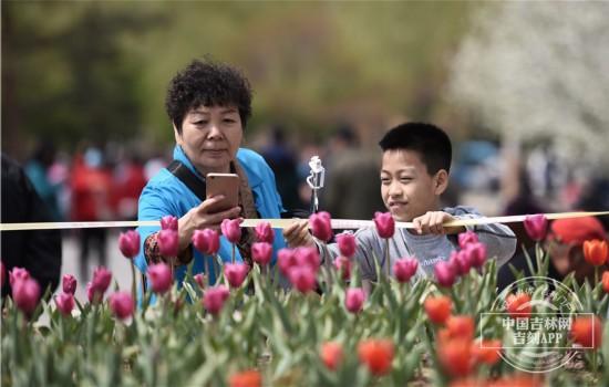 """""""五一""""假期好去处长春公园等你来赏花【图集】"""